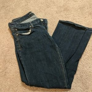 Express Dark Wash Jeans